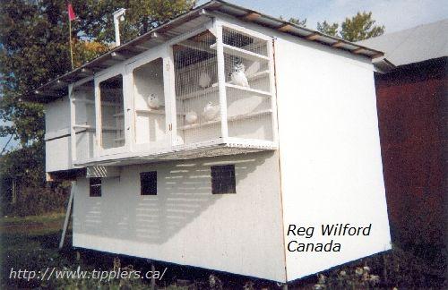 23-reg-wilford