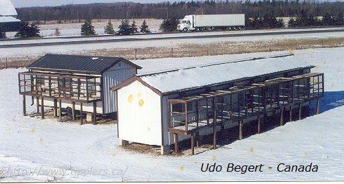 33-udo-begert