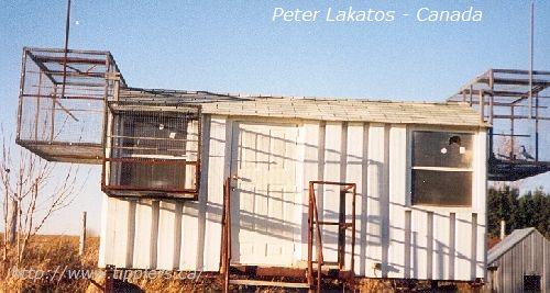 35-peter-lakatos
