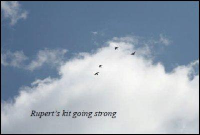 Rupert's Kit going strong