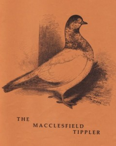 MACCLESFIELD-TIPPLERS-by-G.-Smith-02
